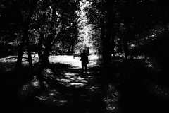 Untitled (Zlatko Vickovic) Tags: noir vojvodina serbia srbija novisad zlatkovickovicphotography blackandwhite streetphotography