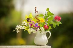Spring Posy II (paulapics2) Tags: flowers jug arrangement spring seasons pretty blossom flora floral canoneos5dmarkiii sigma105mmf28exdgoshsmmacro