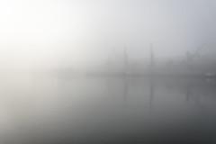 The Cranes from the other side... (Francizc Chachula) Tags: nikon d7200 18105mm constanta romania portofconstanta blacksea sea watter fog crane berth foggy blured fade march 2017 reflection