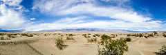 Death Valley Panorama (TS_PHOTOGRAPHY_MUC) Tags: death valley desert usa california kalifornien outdoor roadtrip adventure amerika