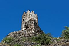 Tour Régine - Châteaux de Lastours - Aude (Vaxjo) Tags: occitanie aude cabardes lastours châteaux ruines ruins