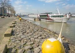 Mooring (stevefge) Tags: nijmegen waal waalkade rivers reflectyourworld riverside boats bridges nederland netherlands nl nederlandvandaag yellow
