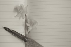 A New Page (chris.ph) Tags: book journal fountainpen formbeforefunction flower daffodils sepia monochrome project52 canon6d ef100mmf28lmacroisusm