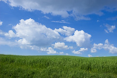 Spring ([Rirri]) Tags: green sky valdorcia val dorcia siena tuscany toscana italia italy verde field campo clouds cloud nuvola nuvole cielo blu blue farm podere ruined ruins spring primavera nature natura grass erba grano wheat