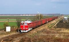 628 001 H-START (M62 001 MÁV) (...síneken a vonat) Tags: 161115 628 628001 628001start bahn nagytőke nagytoke cukorrépa cukorrépaszezon2016 eisebahn line130 luganszk m62 m62001 mav mozdony máv rail railway szergej tehervonat train tren trenur trenuri vaggonstypeeas vasút vlacik vlak vlaky vonat zeleznice locationnagytoke 001 uresrepa2016 uresrepa railroad nagytőkestation cukorrépaszezon2016628001