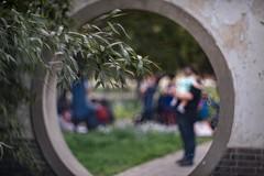 _DSC5177 (kymarto) Tags: bokeh bokehlicious bokehphotography dof depthoffield nikon nikonphotography nikond800 oldlens vintagelens china traditional tourism templeofheaven dallmeyer supersix