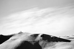 LEO_9069m-01 (MILESI FEDERICO) Tags: milesi milesifederico montagna montagne italia italy iamnikon inmontagna nikon nikond7100 nital natura nature nat wild d7100 europa europe 2017 alpi alpicozie aprile primavera visitpiedmont valsusa valdisusa valliolimpiche valledisusa piemonte piedmont cittàmetropolitanaditorino salbertrand exilles assietta alpini bianconero bw biancoenero blackandwhite monocromatico paesa paesaggio panorama landscape