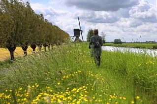 Walking towards the Kockengense mill