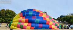 Balloon walk-thru (errolgc) Tags: newzealand balloon hamilton universityofwaikato balloonsoverwaikato2014 nightglow2014 thundercoltax777zkpgtwalkthru