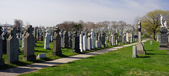 stantons in panorama shot (Visual Thinking (by Terry McKenna)) Tags: ny woodside calvarycemetery infocus highquality
