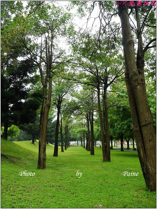 大溪埔頂公園 (29).JPG