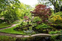 Japanse Tuin Clingendael 2014-02205 (Arie van Tilborg) Tags: japanesegarden denhaag thehague clingendael japansetuin clingendaelestate landgoedclingendael
