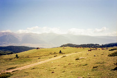 Font-Romeu (lolitanie) Tags: france film home 35mm olympus catalunya 135 xa pyrenees fontromeu languedocroussillon catalogne lolitanie jeanmarcluneau jmluneau fontromeuodeillovia