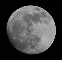 (Nearly) Full Moon! (Sam Coppard) Tags: moon canon sigma fullmoon telephoto 150500 eos550d rebelt2i