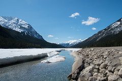 Kicking Horse Melt (djking) Tags: snow canada mountains ice water field river britishcolumbia kickinghorse