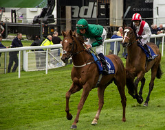 Romsdal and Automated (JTW Aviation Images) Tags: john buick william chester vase races fallon clive kieron automated romsdal brittain gosden