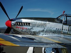 North American TP-51C Mustang (MC.202) Tags: mustang p51 collingsfoundation