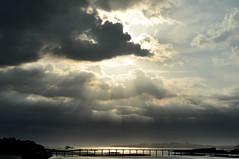 RoscoffBlackLight (Arthur'shoot) Tags: sea roscoff bretagne blacklight rs
