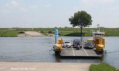 Alemse veer (Maurits van den Toorn) Tags: tree ferry river landscape transport veer boom transportation pont fluss arbre baum brabant fhre landschap fleuve gelderland rivier veerpont alem