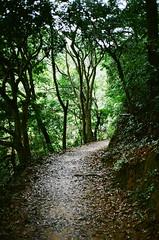Hiking in the Rain !! (ct_charles) Tags: hk film zeiss hongkong kodak hiking ishootfilm contax filmcamera contaxt2 carlzeiss filmisnotdead believeinfilm