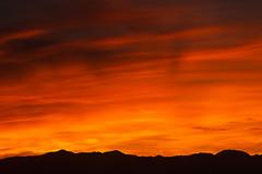 Sunset Ember