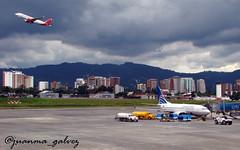 Copa 737-700 y Avianca A320 (juanchito79) Tags: la landing aurora airbus boeing takeoff saab aeropuerto winglets aviacion avianca mggt sharklets