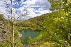 The Gullet Malvern Hills (johnwilly) Tags: landscape canon5d malvernhills ef1740l bwcpl