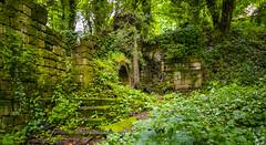 2014-06-03 Lumsdale-4875.jpg (Elf Call) Tags: england mill nikon ruins derbyshire sheffield bakewell 18105 d5300