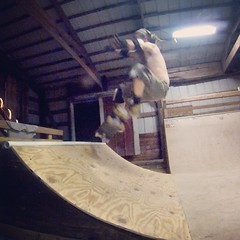 "fs ollie • <a style=""font-size:0.8em;"" href=""http://www.flickr.com/photos/99295536@N00/14354112238/"" target=""_blank"">View on Flickr</a>"
