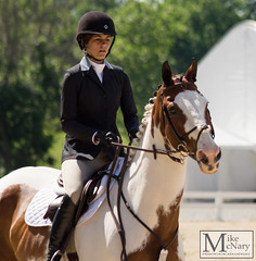 IMGP1067 (mikemcnary) Tags: park horse sport jump jumping ride kentucky air jumper hunter rider equestrian equine kentuckyhorsepark