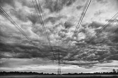 2014-06-24-Greifswald-20140624-224641-i138-p0025-_Bearbeitet1135-DSC-RX10-8.8_mm-.jpg