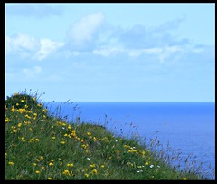 these are a few of my favourite things (Maewynia) Tags: sea grass clouds hills buttercups
