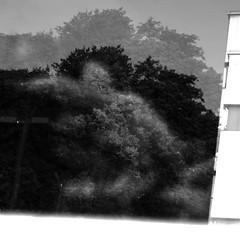 . (William Keckler) Tags: street city summer urban landscape midsummer random walk july harrisburg contemporarylandscape