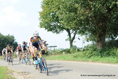 Geel Oosterlo  (105)