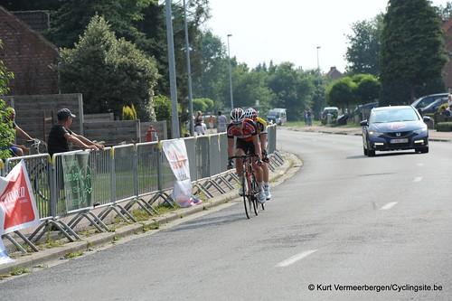 Geel Oosterlo  (287)