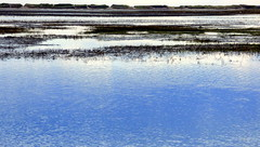 At the Breakwater 4 (mahler9) Tags: provincetown capecod massachusetts shoreline landsend moors breakwater jaym mahler9 andantecomodofotos