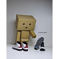 1549250_10201882681652019_3379452359086460768_n (WovenTam) Tags: toys nike jordan danbo aj2 danboard aj10 minidanboard