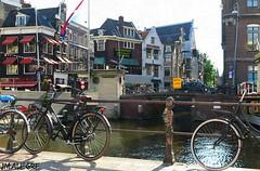 Amsterdam, dinamismo y color
