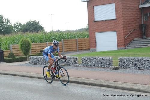 Geel Oosterlo  (261)