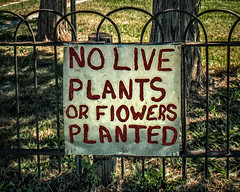 No live plants planted (David DeCamp) Tags: sign nature fence grass green red signage