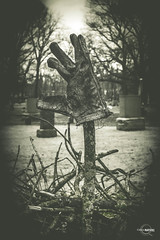 The Glove (Ghost Of Nations Photography And Digital Art) Tags: ghostofnationsphotography ghostofnations gloomy gothic graveyard liminal dark blackandwhite bw black stick wood eerie weird spooky
