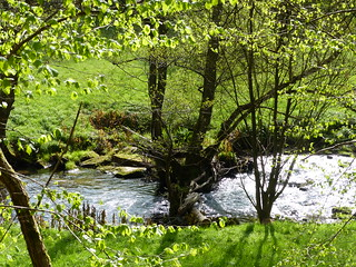 Abtal-Wanderung (Nordschwarzwald)
