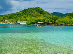 Version 2 Anthony's Key Resort Roatan Honduras April 2017 (bermudafan8) Tags: 2017 spring break bermudafan8 roatan honduras anthonykeyresort