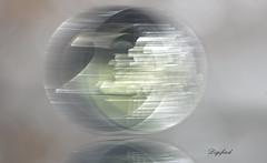 2 Euro (Digifred.) Tags: macromondays intentionalblur digifred 2017 pentaxk5 macro blur beweging euro