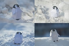 Baby penguin by You Tae Young (Nikita Vasiliev) Tags: origami paper paperart snow penguin baby youtaeyoung posing