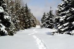 Randonnée de raquette (pascal_roussy) Tags: paysage landscape nature hiver winter neige snow