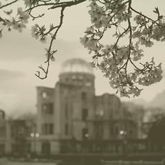 原爆ドーム/Atomic bomb dome (yoshinori.okazaki) Tags: atomic bomb dome bw hiroshima sakura 原爆ドーム 広島 桜 春
