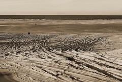 Beach (De Rode Olifant) Tags: northsea marjansmeijsters terschelling thenetherlands