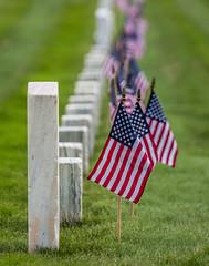 MrttNtlCmtry_3007.jpg (C.Fredrickson Photography) Tags: carlfredrickson ©carlfredrickson2016 georgia ga marietta mariettanationalcemetery 2016 cemetery memorial may