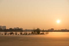 Morning Mist 9 (genf) Tags: ouderkerk amstel meadows weilanden sun zon sunrise zonsopkomst flats fla buildings outdoor silhouette trees grass warm color colour kleur gras amsterdam sony a77 mood stemming